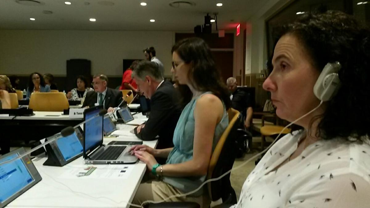 Antonia speaking about gender and disability at the Conference of States Parties to th CRPD